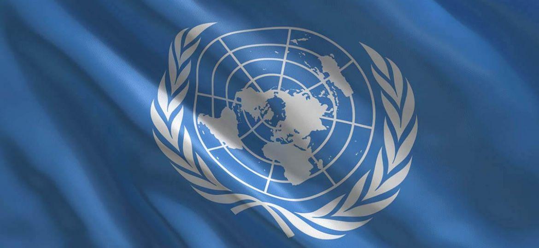 ONU boletin menos tamaño
